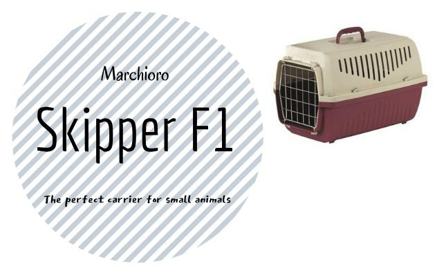 Marchioro Skipper F1