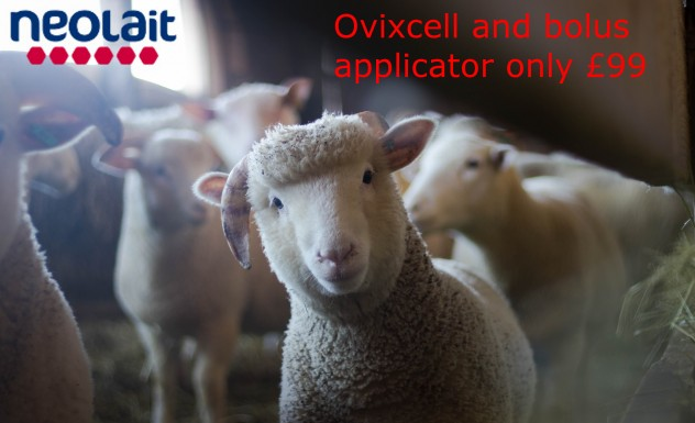 Ovixcell and applecator