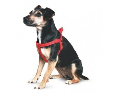 Ancol Padded Nylon Reflective Harness Red Medium by Ancol
