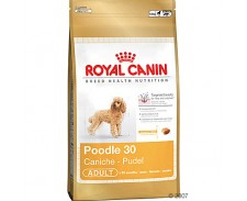 Royal Canin Adult Poodle 7.5kg by Royal Canin