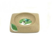 Pureness Eco Natural Feed Dish Medium by Pureness