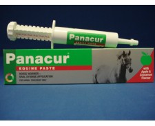 Panacur Paste Equine 24g by Panacur
