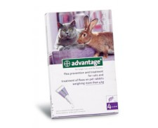 Advantage 80 Flea Treatment Cats & Rabbits 4kg+ by Advantage