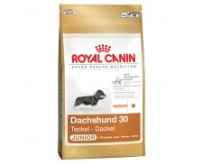 Royal Canin Junior Dachshund 1.5kg by Royal Canin