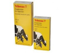 Tribovax T by MSD (Intervet UK)