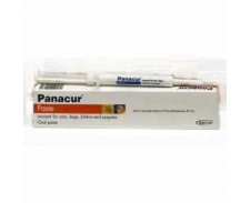 Panacur Paste Syringe Cat & Dog 5g x 10 by