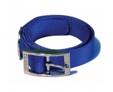 Canac Collar Blue Size 10 - 12 by Misc