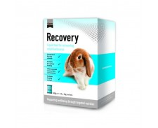 Supreme Science Recovery Sachet 20g x 10 by Supreme